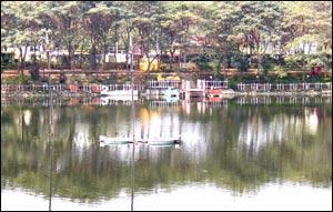 Charvee's Lake Treat
