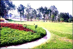 Botanical Gardens / Sri Kotla Vijaya Bhaskar Reddy Botanical Garden