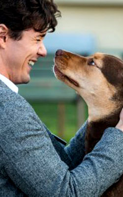 A Dog's Way Home (english) - cast, music, director, release date