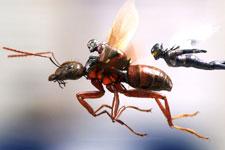 Ant-Man And The Wasp (Hindi)