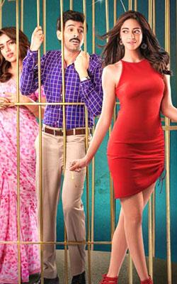 Pati Patni Aur Woh (2019) (hindi) - show timings, theatres list