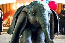Dumbo (Telugu)