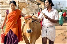 Maavaadu (telugu) - cast, music, director, release date