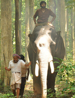 Kumki (Tamil) (tamil) - cast, music, director, release date