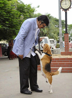 Tommy - The Lovely Dog (telugu) reviews